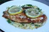 Lemon Butter Baked Tilapia Fillets