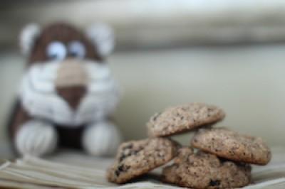 Raisin Chia Cookies